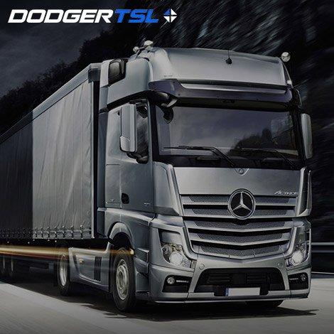 Wdrożenie strony firmowej dla DODGER TSL
